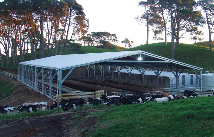 Dairy Shed Cover