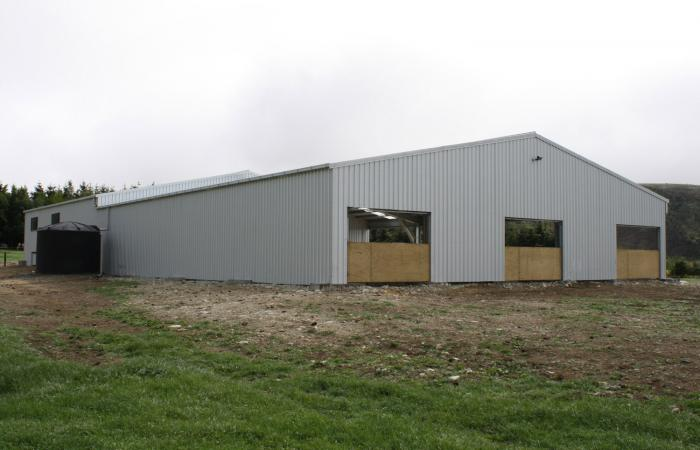 Shearing Sheds Rear View